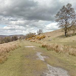 Country Walk - Totley Tunnel Top to Longshaw