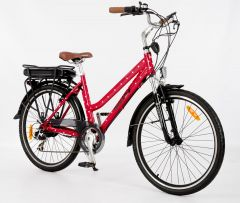 Roodog Polka Dot Electric Bike