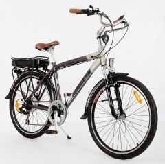 Roodog Tourer Electric Bike
